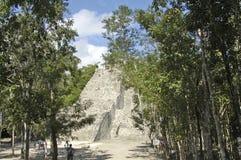 The main ziggurat Royalty Free Stock Photo