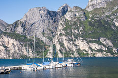 Maina at Lake Garda Stock Photography