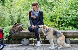 Pregnant woman and sitting dog at Mainau island garden. Germany stock photos