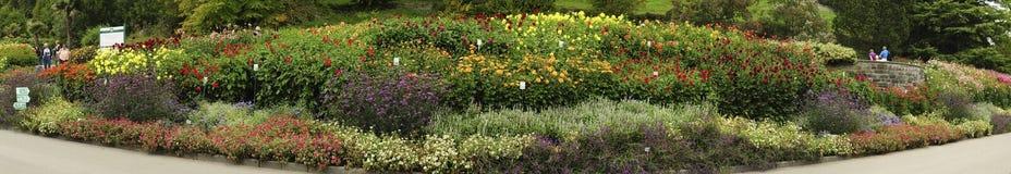 Mainau ogródy botaniczni Zdjęcia Royalty Free