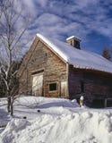 Maine barn Stock Photography