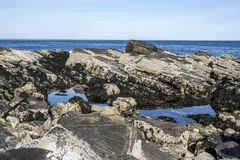 Maine Coast. In early morning in South Portland Royalty Free Stock Images