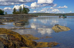 Maine coast. Seaweed and rocks with a small boat and cloudy blue sky on the coast of Maine Stock Images