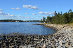 Maine Coast. The rocky coast of Maine with pines at the shoreline and drifting clouds Stock Photos