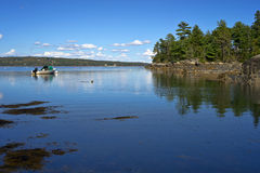 Maine coast in summertime. View of the coast of Blue Hill Maine in the summertime with a small anchored boat, seaweed in the foreground, rocks and trees on an Royalty Free Stock Image