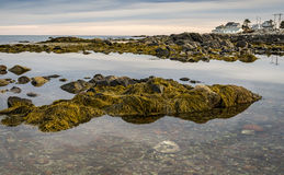 Maine coast at sunset. Maine coast as sun comes over the horizon Royalty Free Stock Photography