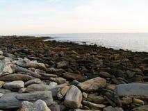 Maine Coastline Low Tide Stones Image libre de droits