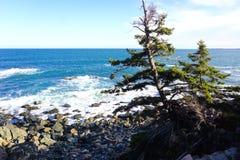 Maine coastline Stock Photos