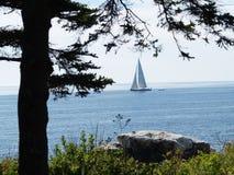 Maine Coastline Sailboat Photographie stock libre de droits
