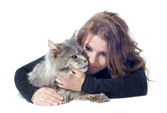 Maine coon cat and woman. Portrait of a purebred  maine coon cat and woman on a white background Stock Images