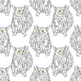 Maine coon pattern. Maine coon cat portrait. Hand drawn vector illustration. Pet seamless pattern background Royalty Free Stock Image