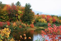 Maine fall foliage Royalty Free Stock Images