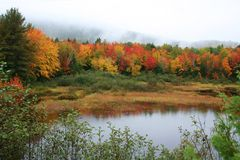 Maine fall foliage & pond Stock Photo