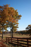 Maine field in fall Stock Images