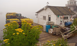 Maine fishing shack and dock. A view of an old Maine fishing shack and lobster traps on the shore of Bass Harbor on a foggy afternoon Stock Photos