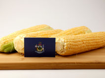 Maine flag on a wooden panel with corn isolated on a white backg Stock Photos