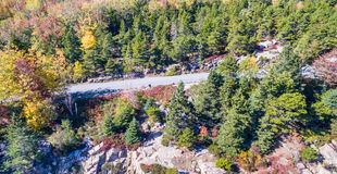Maine forest along the coast, aerial view.  Royalty Free Stock Images