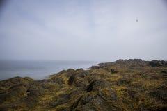Maine Landscape Stock Photos