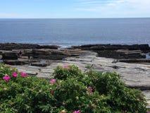 Maine linia brzegowa Fotografia Royalty Free