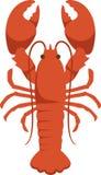 Maine Lobster Foto de archivo libre de regalías
