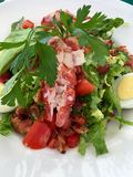 Maine lobster Cobb salad stock photography