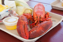Maine Lobster Stock Photography