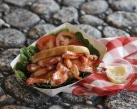 Maine Lobster Roll Picnic op Rotsen Royalty-vrije Stock Fotografie