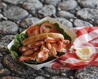 Maine Lobster Roll Picnic sur des roches Photographie stock libre de droits