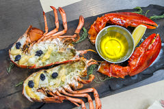 Maine Lobster Top Class Stock Photography