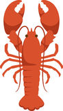Maine Lobster Royalty Free Stock Photo