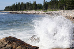 Maine ocean. Sea water crashes against shore on Maine coast royalty free stock photography