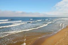 Maine plażowy stary sad Zdjęcia Royalty Free