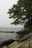 Maine's Rocky Coast. In Freeport, Maine Stock Image