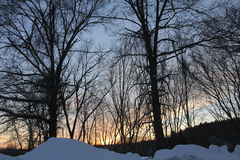Maine sunset. Through the trees Stock Photo