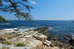 Maines岩石海岸线 免版税库存照片