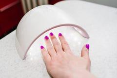 Mains à l'intérieur de lampe pour le nailse fermez-vous, lampe UV Photographie stock libre de droits