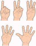 Mains 1 à 5 Images libres de droits