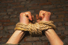 Mains attachées avec la corde Photo stock