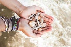 Mains avec des coquilles en mer photographie stock libre de droits