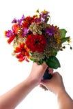 Mains avec des fleurs au-dessus de blanc Images libres de droits