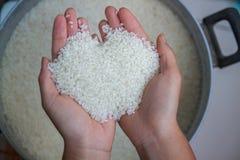 Mains avec du riz, plan rapproché comment choisir le riz ? images stock