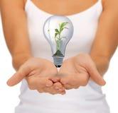 Mains avec l'ampoule de feu vert images libres de droits
