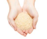 Mains avec le segment de mémoire du riz Photos libres de droits