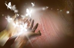 Mains avec les papillons rougeoyants Image libre de droits