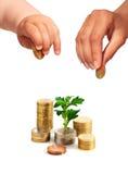 Mains avec les pièces de monnaie et l'usine. Image stock