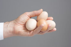 Mains avec quatre oeufs de poules Photo stock