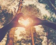 Mains comme coeur d'amour Photo libre de droits