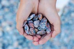 Mains complètement des pierres de mer Image libre de droits