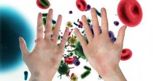 Mains contre des globules sanguins et des cellules de bactéries dans le courant 4k de sang banque de vidéos