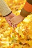 Mains contre les feuilles tombées Image stock